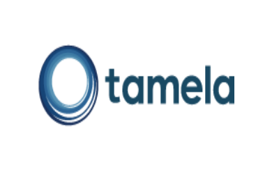 Tamela Capital Partners Logo